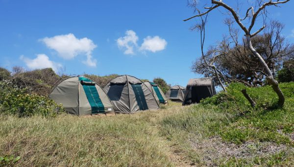 Mabeco tours campsite in Maputo special reserve
