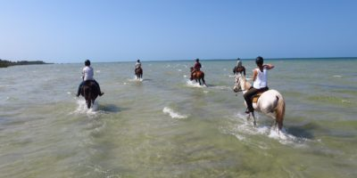 mozambique-horse-riding